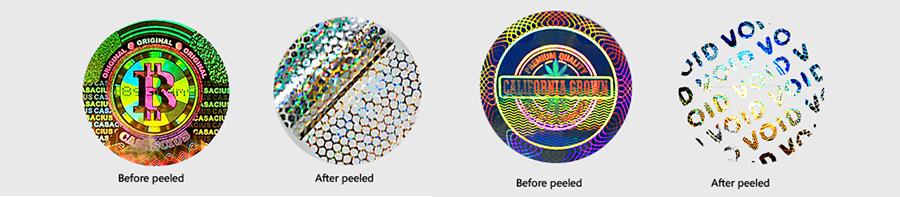 VOID/Honeycomb Hologram